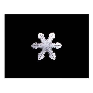 Imagem real do floco de neve cartão postal
