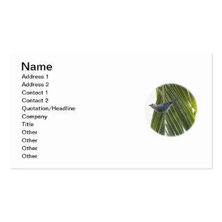 Imagem tropical do pássaro na palmeira modelo cartoes de visita
