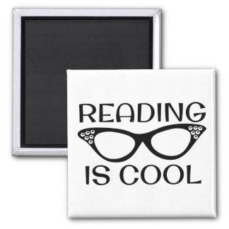 Íman A leitura é ímã legal com vidros do olho de gato