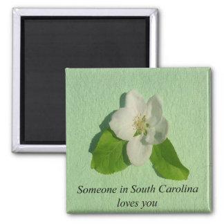 Íman Alguém em South Carolina ama-o que Apple floresce
