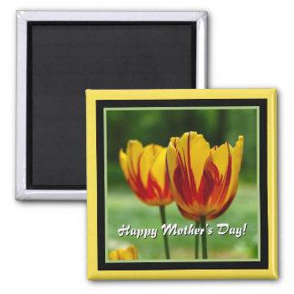 Íman Dia das mães feliz! Vermelho amarelo das tulipas