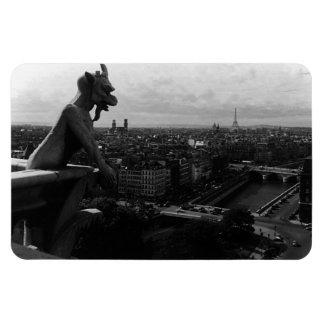 Íman Diabo da catedral de France Paris Notre Dame do