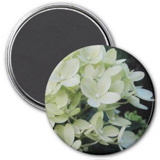 Íman Hydrangea sonhador floral