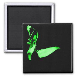 Íman Ímã verde do lance da pintura