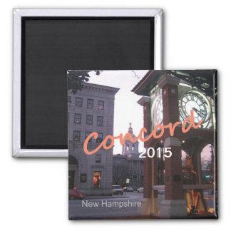 Íman Ímãs da lembrança da foto de New Hampshire da