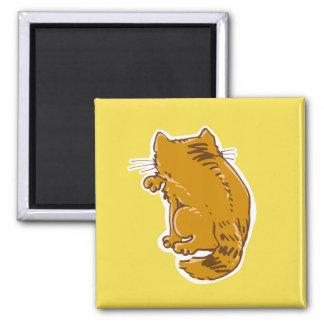 Íman lambendo desenhos animados do doce do gato de gato
