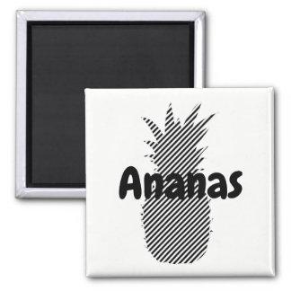 Íman Magnet quadrado Ananás