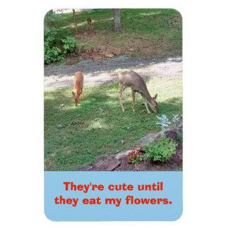 Íman Os cervos bonitos até comem meu ímã 4x6 vertical
