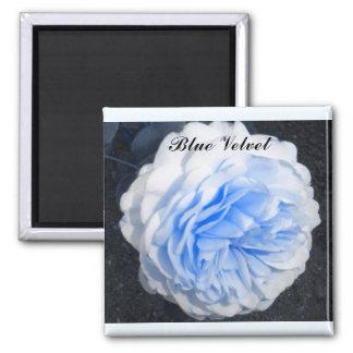 Íman Rosa do azul