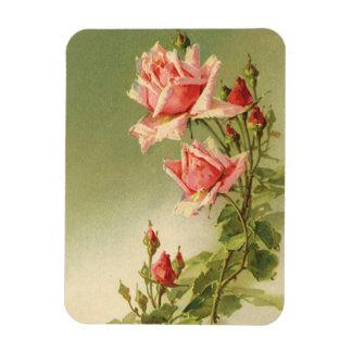 Íman Rosas cor-de-rosa do jardim do vintage para o dia