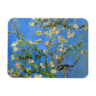 Íman Vincent van Gogh - belas artes de florescência da