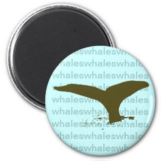 Íman whale tail
