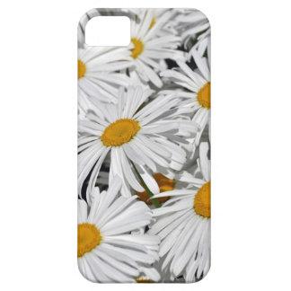 Impressão bonito da flor da margarida branca capas para iPhone 5