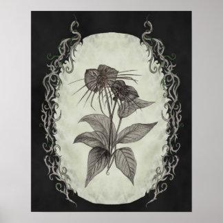 Impressão botânico da planta preta do bastão