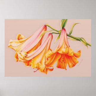"""Impressão botânico do poster das belas artes dos """""""