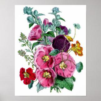 Impressão botânico - Hollyhocks & rosas
