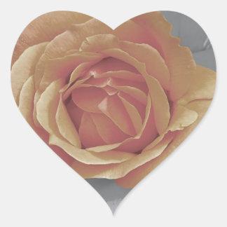 Impressão cor-de-rosa das flores da laranja adesivo coração