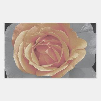 Impressão cor-de-rosa das flores da laranja adesivo retângular