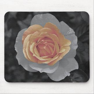 Impressão cor-de-rosa das flores da laranja mouse pad