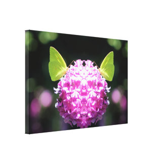 Impressão da arte da fotografia da borboleta dos impressão em tela