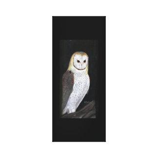 Impressão da coruja de celeiro