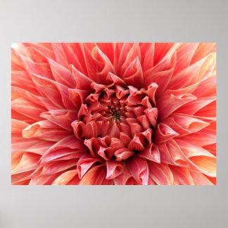 Impressão da decoração 88 da flor
