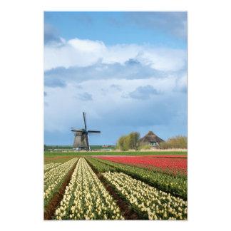 Impressão da foto do moinho de vento e da paisagem