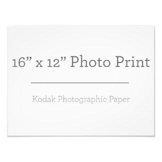 Impressão da foto X12 do costume 16