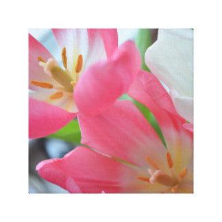 Impressão das belas artes das tulipas