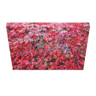 Impressão das canvas do esplendor do outono