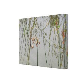 Impressão das canvas - reflexões da água