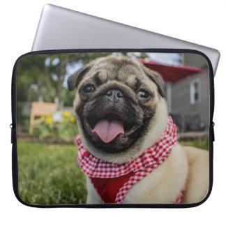 Impressão do Bandana do amor do Pug Capas Para Computadores
