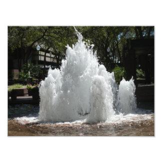 Impressão do centro da foto da fonte de Tampa Flor