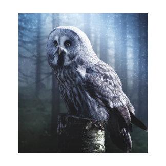 Impressão Em Canvas A coruja de noite senta-se no coto de árvore