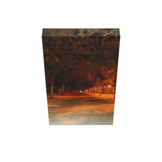 Impressão Em Canvas Árvores