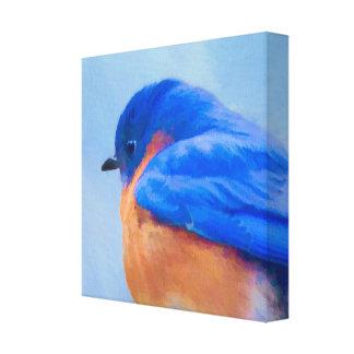 Impressão Em Canvas Bluebird
