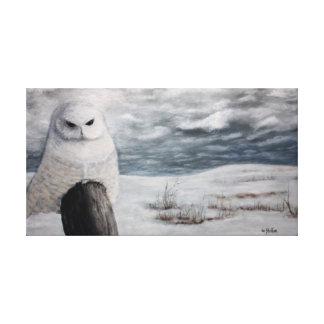 Impressão Em Canvas Coruja da neve em Prarie