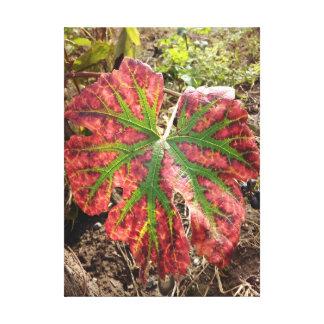 Impressão Em Canvas Folha da uva do outono