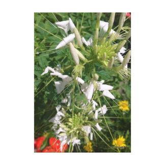 Impressão Em Canvas Fotografia misturada da flor por JanLynn