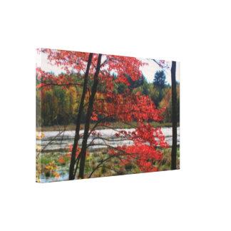 Impressão Em Canvas Natureza isolado do pântano do outono