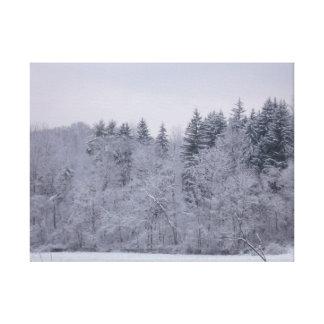 Impressão Em Canvas Paisagem do inverno