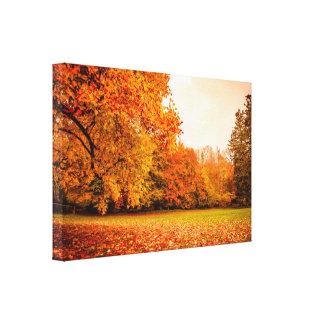 Impressão Em Canvas Paisagem do outono com árvores coloridas