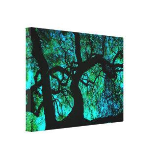Impressão Em Canvas Sob a árvore na turquesa