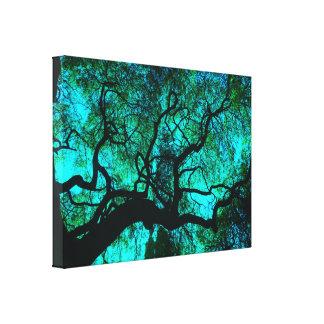 Impressão Em Canvas Sob a árvore na turquesa III