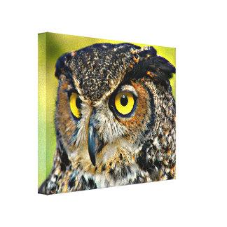 Impressão Em Canvas TCWC - Grande coruja Horned