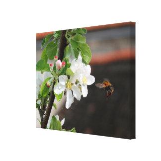 Impressão Em Tela abelha