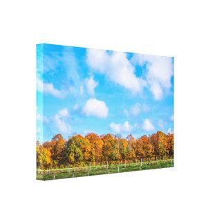 Impressão Em Tela Árvores coloridas em uma paisagem do outono