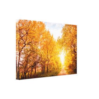 Impressão Em Tela Árvores coloridas pela estrada no outono