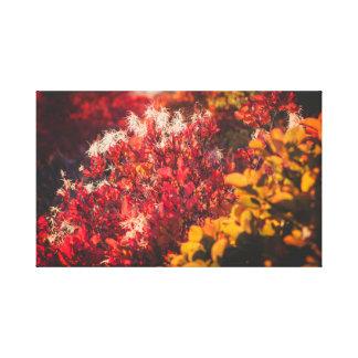 Impressão Em Tela As cores da natureza do outono