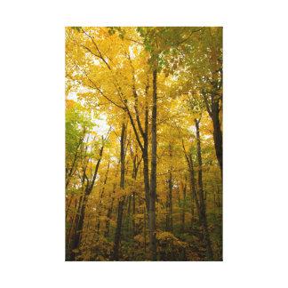 Impressão Em Tela Cor do outono, Michigan